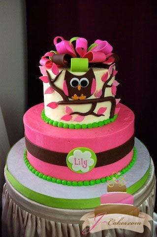 (221) Owl Baby Shower Cake