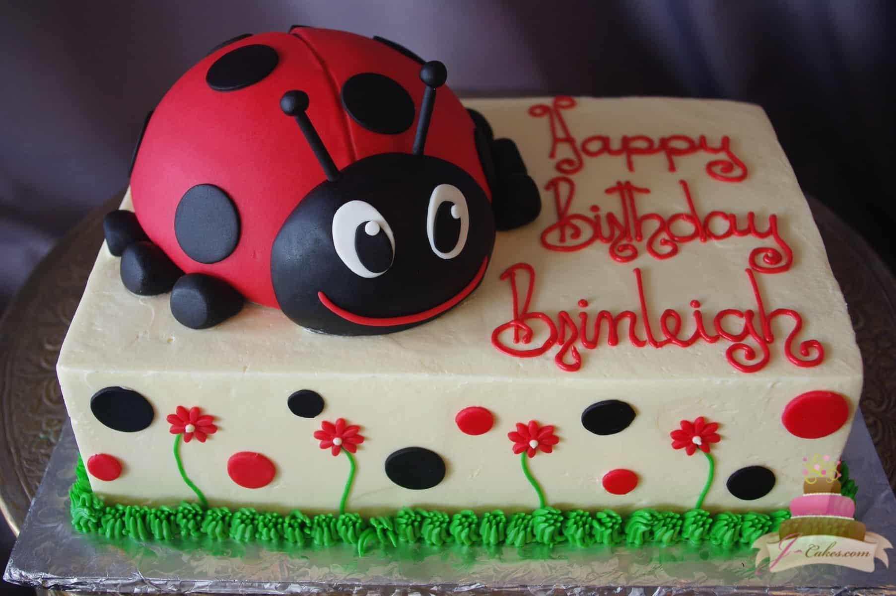 (516) Ladybug Theme Cake